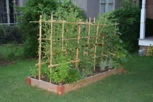 Raised Garden Bed Drip Irrigation - raised bed garden starting to produce unknown dog