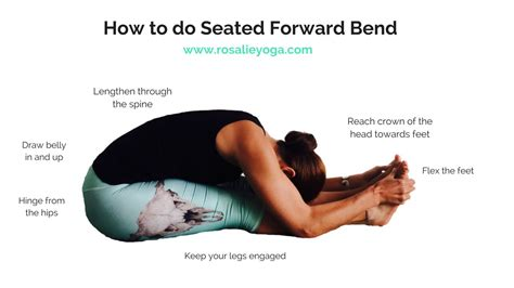 seated forward fold beginners how to do seated forward bend