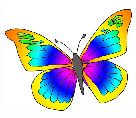 free butterfly clipart rainbow butterfly clipart pretty butterfly pencil and in