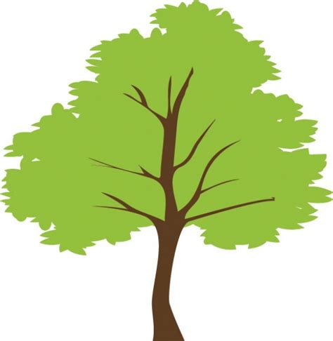 Tree Outline Green by Simple Green Tree Vector Illustration Welovesolo