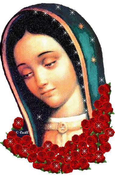 imagenes de la virgen de guadalupe que brillen 174 gifs y fondos paz enla tormenta 174 imagenes de la virgen