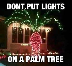 a never put christmas lights on a palm tree dump a day