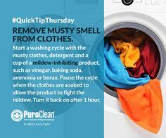 how to remove musty smell from bathroom 1000 ideas about remove mold stains on pinterest remove