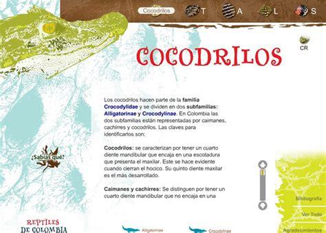 libro minicuentos de cocodrilos y un lanza portal para la investigaci 243 n de reptiles colombianos unimedios universidad nacional