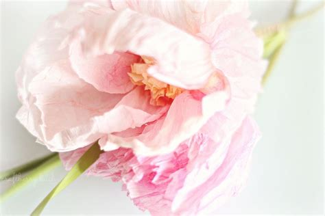 How To Make Realistic Paper Flowers - hometalk realistic crepe paper flower