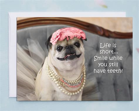 pug birthday birthday cards smile while you still teeth pug birthday card by