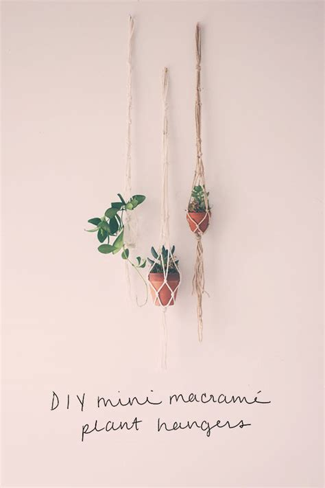 Macrame Plant Hangers Diy - diy mini macrame plant hangers pictures photos and