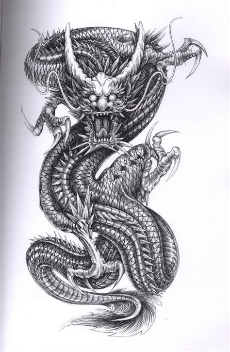 tattoo sketch dragon dragon tattoo for some remembers dragon tattoos tattoo