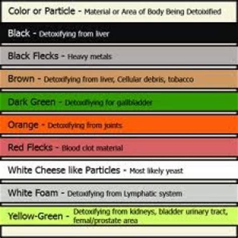 Denver Health Detox Phone Number by Detox Color Chart Functional Nutrition Alternative