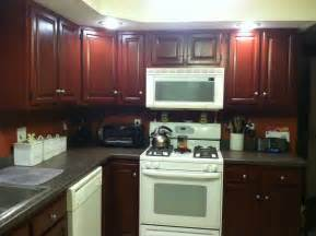 Kitchen Cabinet Painting Ideas by Painting Kitchen Cabinets Ideas Photos Decobizz