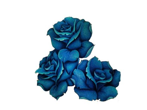 blue rose tattoo pictures blue with banner design by gemma spike