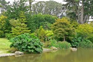 Botanical Gardens Sf by San Francisco Botanical Garden S Reviews