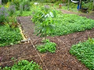 Different Types Of Gardens - greenwich forest garden amherst ma