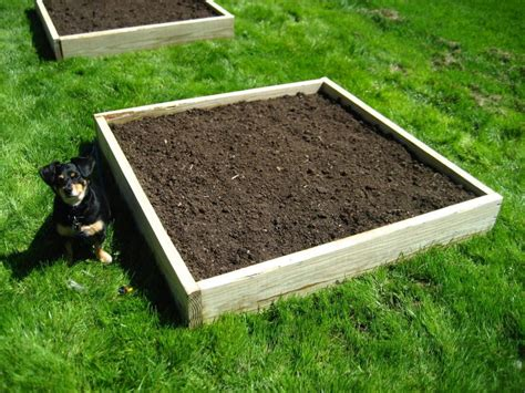 soil mix for raised beds raised bed soil mix buy turf essex and turf suffolk