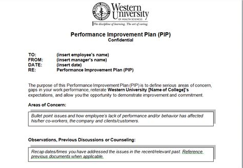 performance improvement project template performance improvement plan sle template excel tmp
