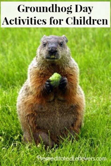 groundhog day drink 133 best images about groundhogs on groundhog