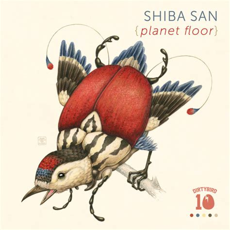 Planet Floor by Shiba San Planet Floor Preview By Dirtybird Dirtybird Free Listening On Soundcloud