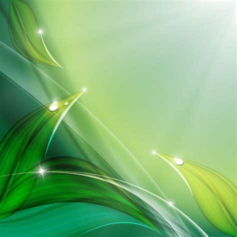 wallpaper daun hijau hd green leaf with water drops free vector download 11 440