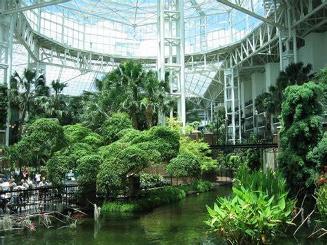 arboretum  atrium  images indoor courtyard