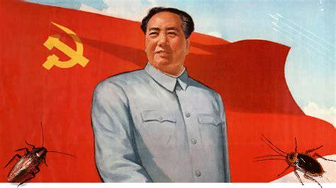Li Laney La 10 Original china est 225 formando un ejercito de 1000 millones de cucarachas columna tamaulipas