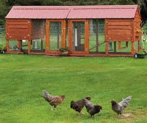 Design your own beautiful chicken coop quarto homes