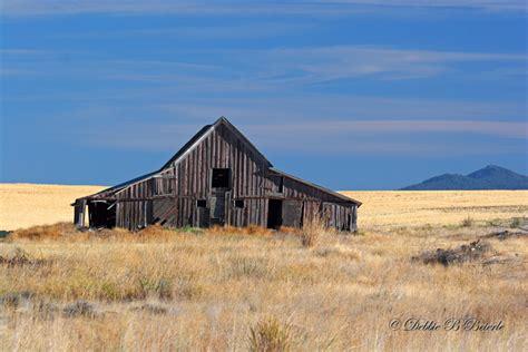 rustic barns rustic barn photo debbie blackburn beierle photos at