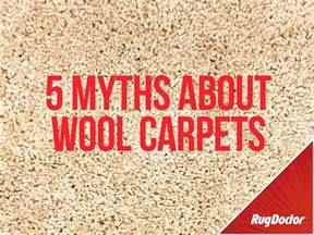 5 myths about cleaning wool carpets rug doctor