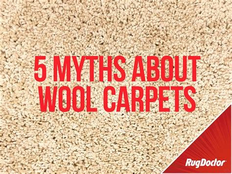how to get wine out of wool rug cleaning stains from wool carpets carpet nrtradiant