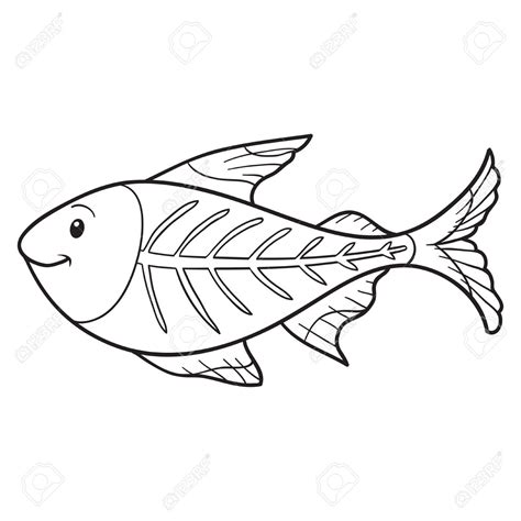 x ray fish coloring page depetta coloring pages 2018