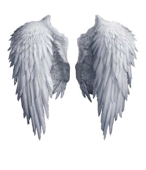 imagenes reales red wings angel wings stock png by shadow of nemo on deviantart