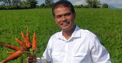 Benih Wortel Berastagi kunjungan dirjen hortikultura kabupaten karo sumut
