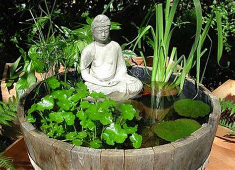 piante acquatiche in vaso come coltivare le piante acquatiche idee green