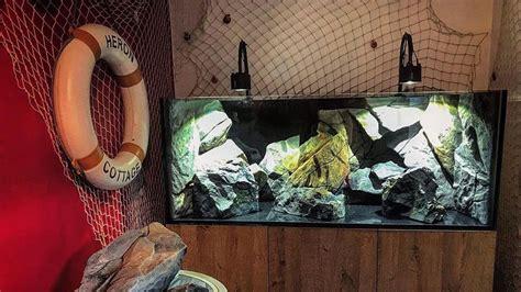 unique aquarium style aquarium decorations aquadecor