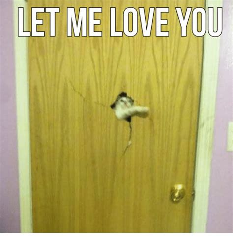 Let Me Love You Meme - 25 best memes about let me love you let me love you memes