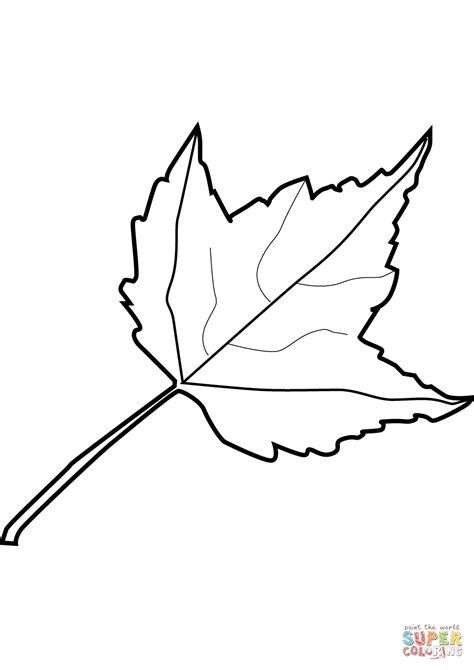 coloring pages maple leaves maple leaf coloring page free printable coloring pages