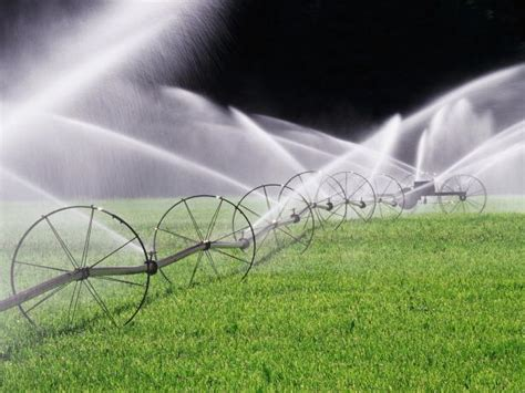 conduct  irrigation audit hgtv
