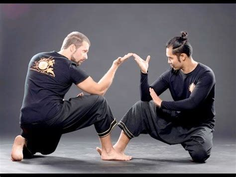 martial arts silat harimau the deadly beauty 800 best images about martial arts on pinterest aikido