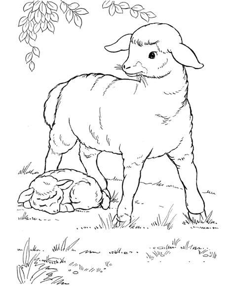 coloring pages farm animals and their babies desenhos para colorir mais animais da fazenda