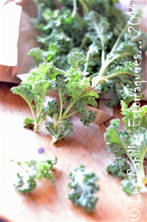 comment cuisiner le chou kale comment cuisiner le chou kale trois recettes pour cuisiner