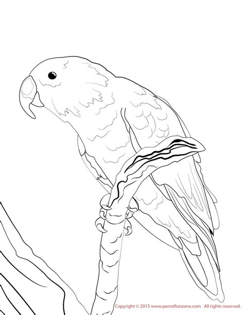 boy body coloring page coloring male body profile coloring pages