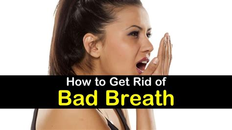 how to get rid of bad odor in house how to get rid of bad breath