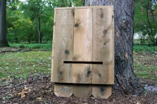How To Keep Cats Out Of Your Backyard by How To Build A Bat House How Tos Diy