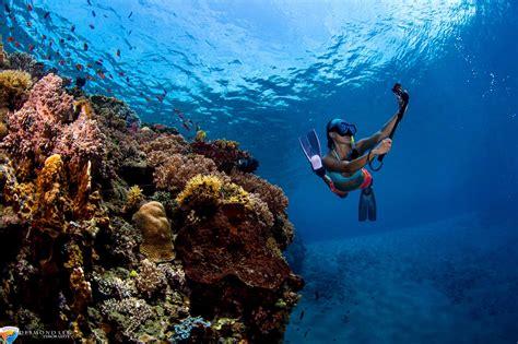 dive resort aquatica dive resort scuba diving at timor leste east