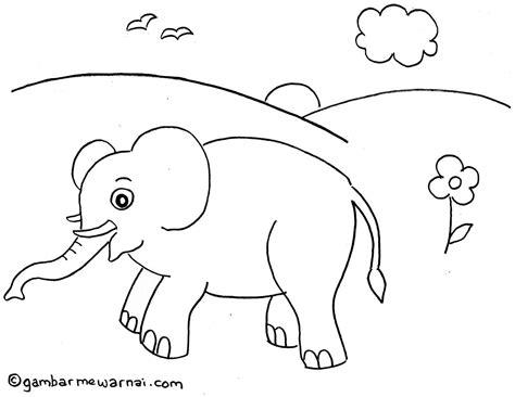 mewarnai binatang gambar mewarnai gambar mewarnai gajah gambar mewarnai