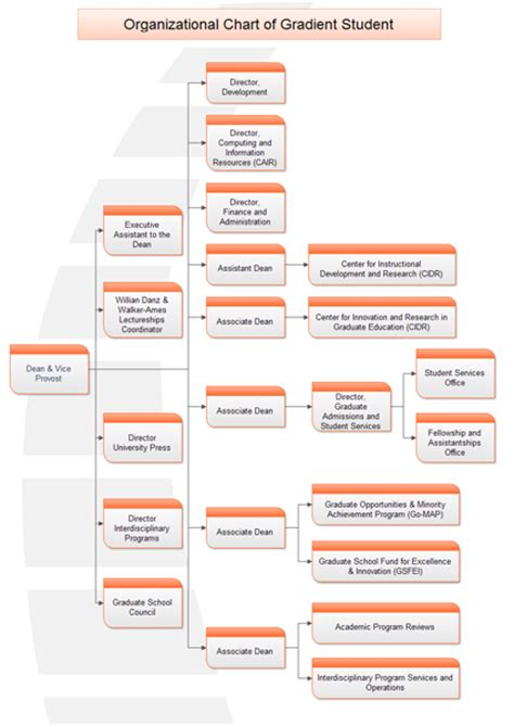 school organizational chart lots of school organization