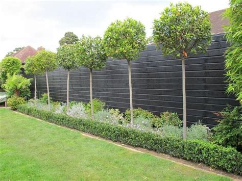 fence line garden ideas 25 best ideas about garden fences on fence