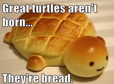 Funny Food Memes - funny food memes www pixshark com images galleries