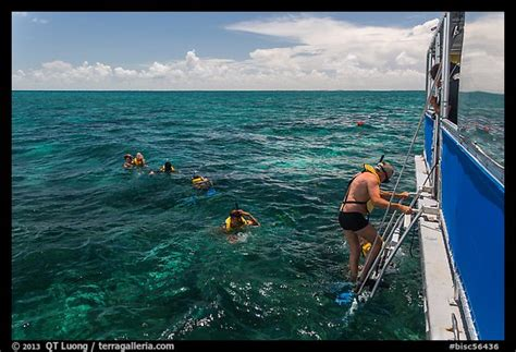 biscayne national park boat tour picture photo snorkeling boat snorklers and reef