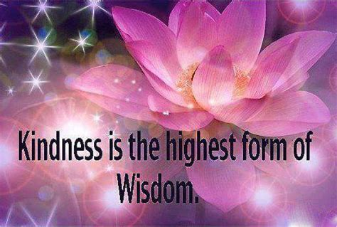 google images kindness kindness the highest form of wisdom have a magnificent day