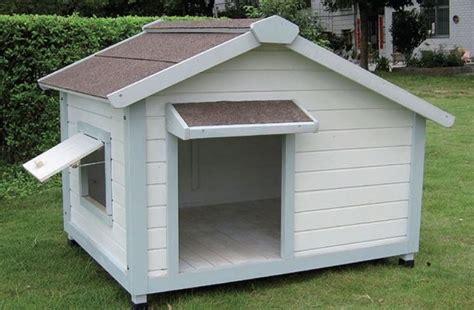 pedane riscaldate per cani box per cani accesori tipologie box per cani